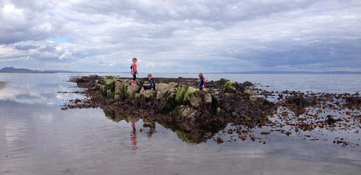 Rock Pooling at Longniddry Bents